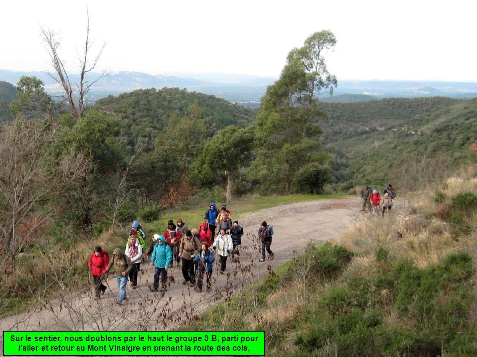 Sur le sentier, nous doublons par le haut le groupe 3 B, parti pour laller et retour au Mont Vinaigre en prenant la route des cols,