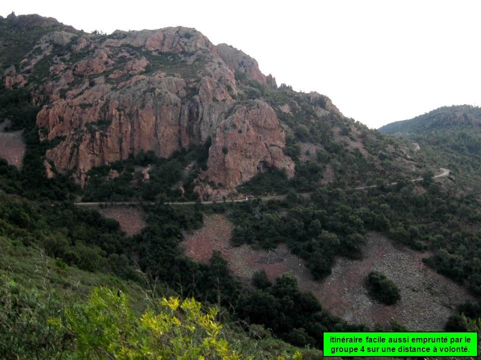 Le sentier est escarpé, dans un paysage tantôt rocheux, tantôt sylvestre, avec les surprenants troncs deucalyptus dénudés.
