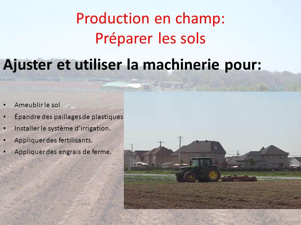 Production en champ: Préparer les sols Ajuster et utiliser la machinerie pour: Ameublir le sol Épandre des paillages de plastiques. Installer le systè