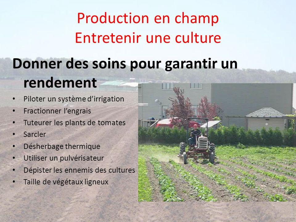 Production en champ Entretenir une culture Donner des soins pour garantir un rendement Piloter un système dirrigation Fractionner lengrais Tuteurer le