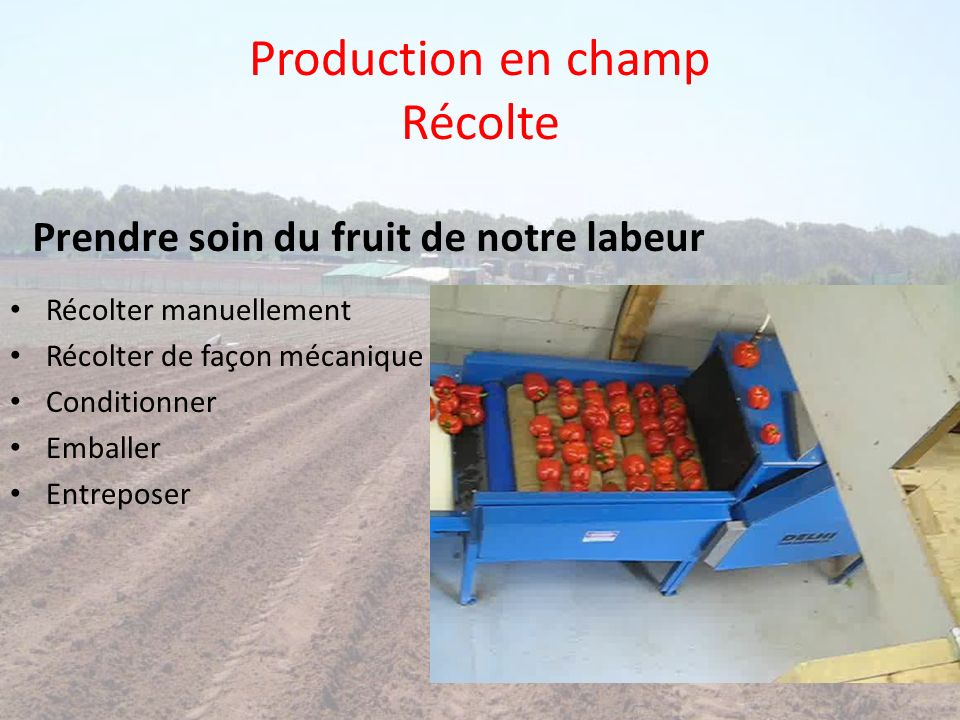 Production en champ compostage Élaborer une recette de compostage Suivre les paramètres Optimiser le processus Produire un compost de qualité