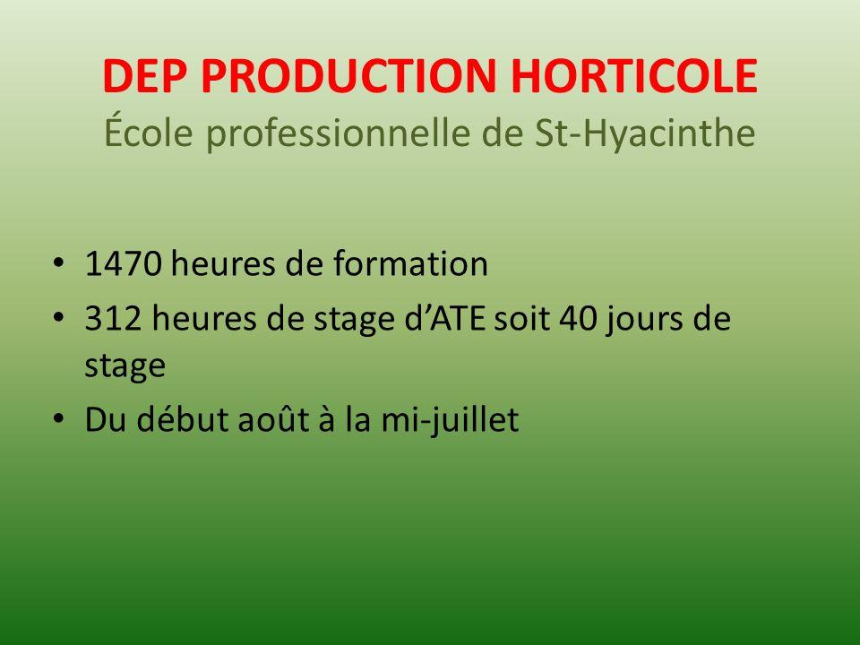 DEP PRODUCTION HORTICOLE 5 grands thèmes de formation Connaissances de base; Production en serre; Production en champ; Entretien de machineries; Entretien de bâtiments et construction de serre.