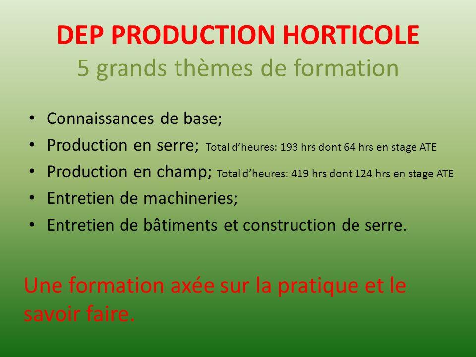 DEP PRODUCTION HORTICOLE 5 grands thèmes de formation Connaissances de base; Production en serre; Production en champ; Entretien de machineries; Entre