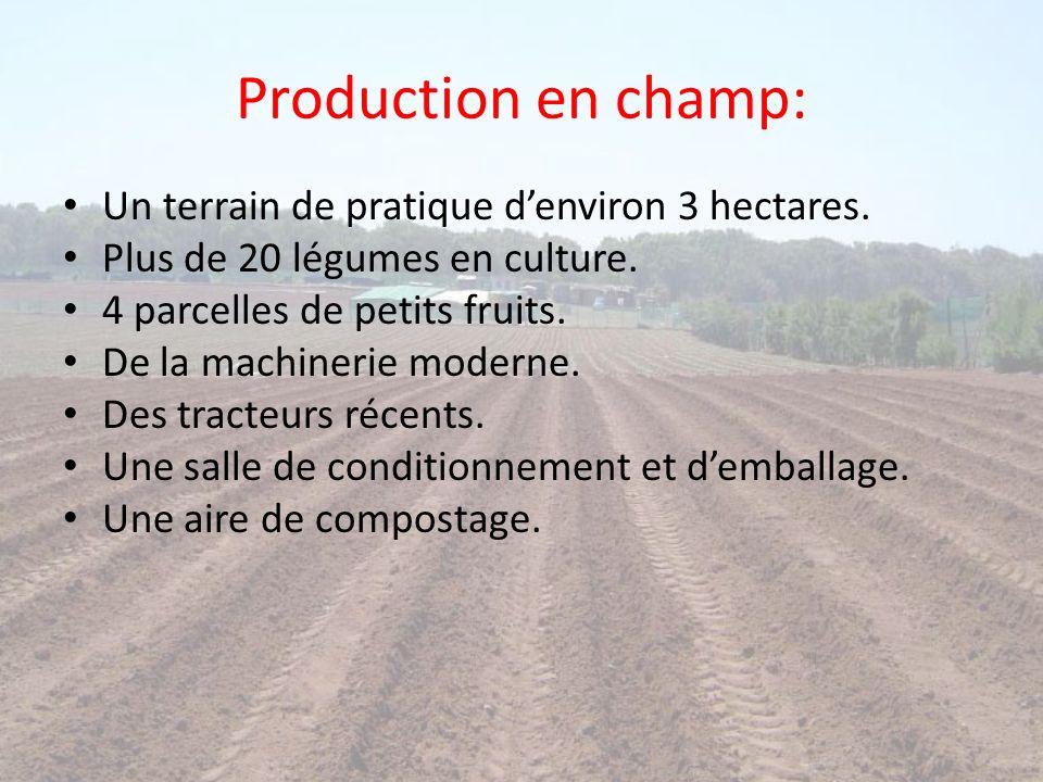 Production en champ: Un terrain de pratique denviron 3 hectares. Plus de 20 légumes en culture. 4 parcelles de petits fruits. De la machinerie moderne