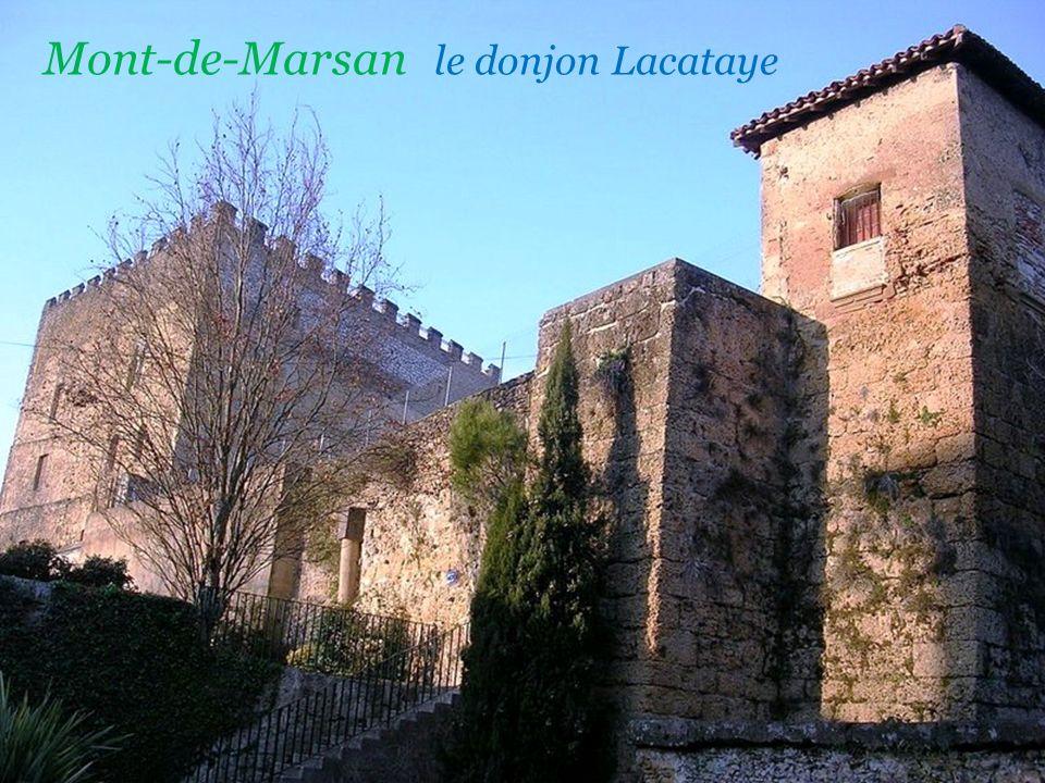 Mont-de-Marsan confluence de la Douze et du Midou