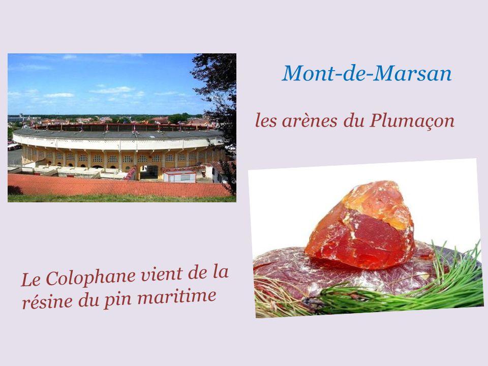 Mont-de-Marsan le donjon Lacataye