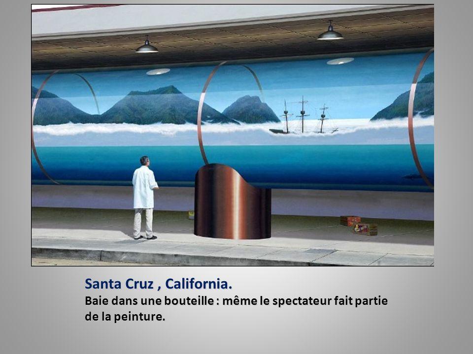 Santa Cruz, California. Baie dans une bouteille : même le spectateur fait partie de la peinture.