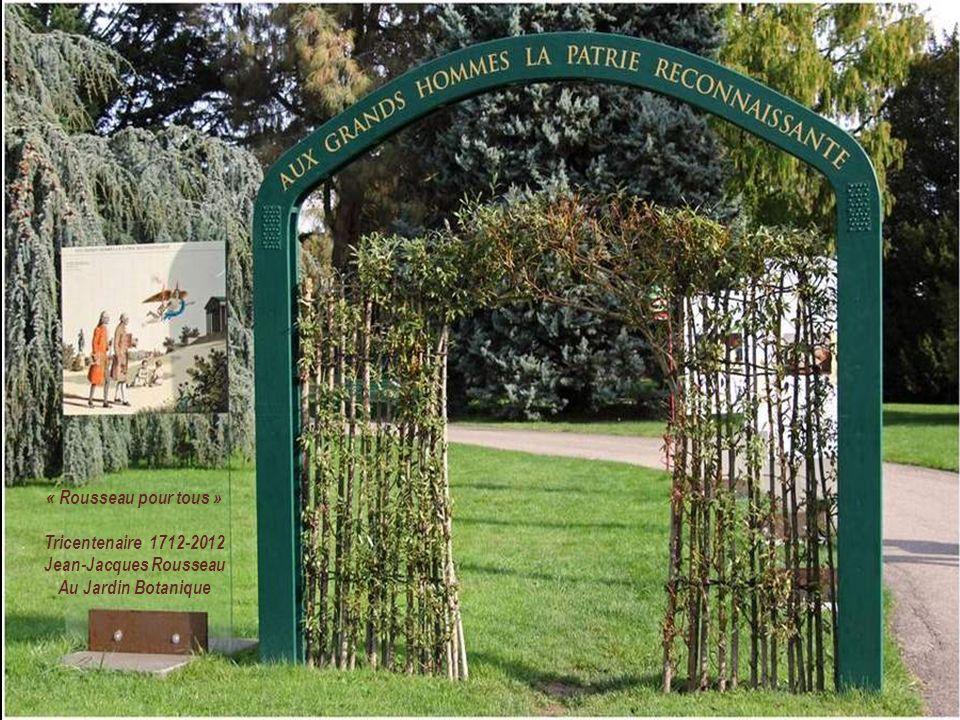 Haut lieu de la science botanique par son Conservatoire, le Jardin botanique abrite sur 28 hectares des collections de plantes des cinq continents. Ce
