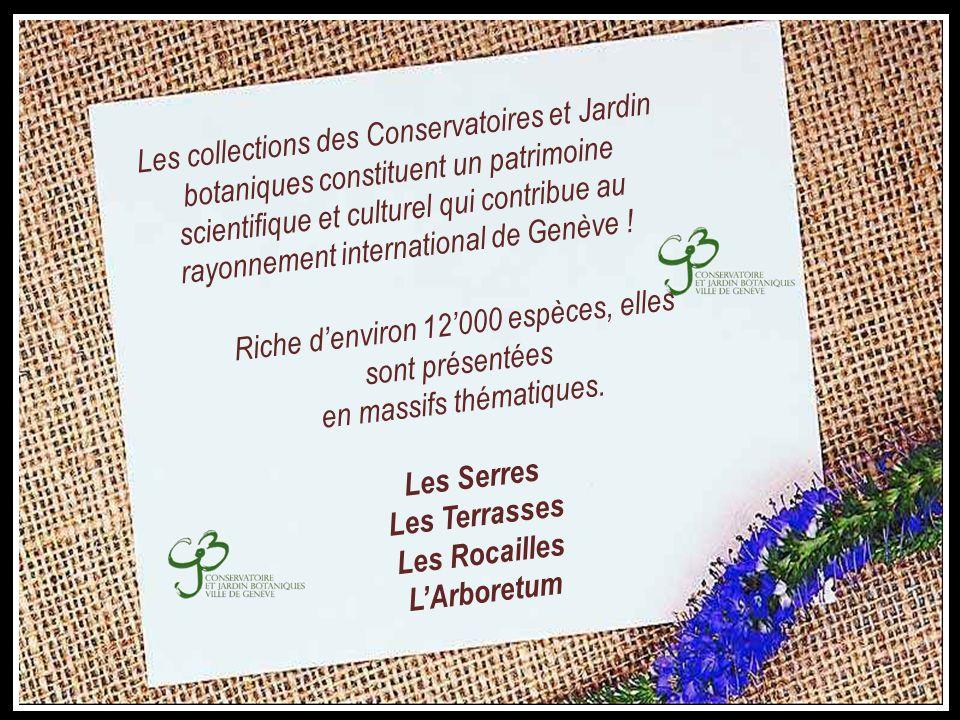 « Rousseau pour tous » Tricentenaire 1712-2012 Jean-Jacques Rousseau Au Jardin Botanique
