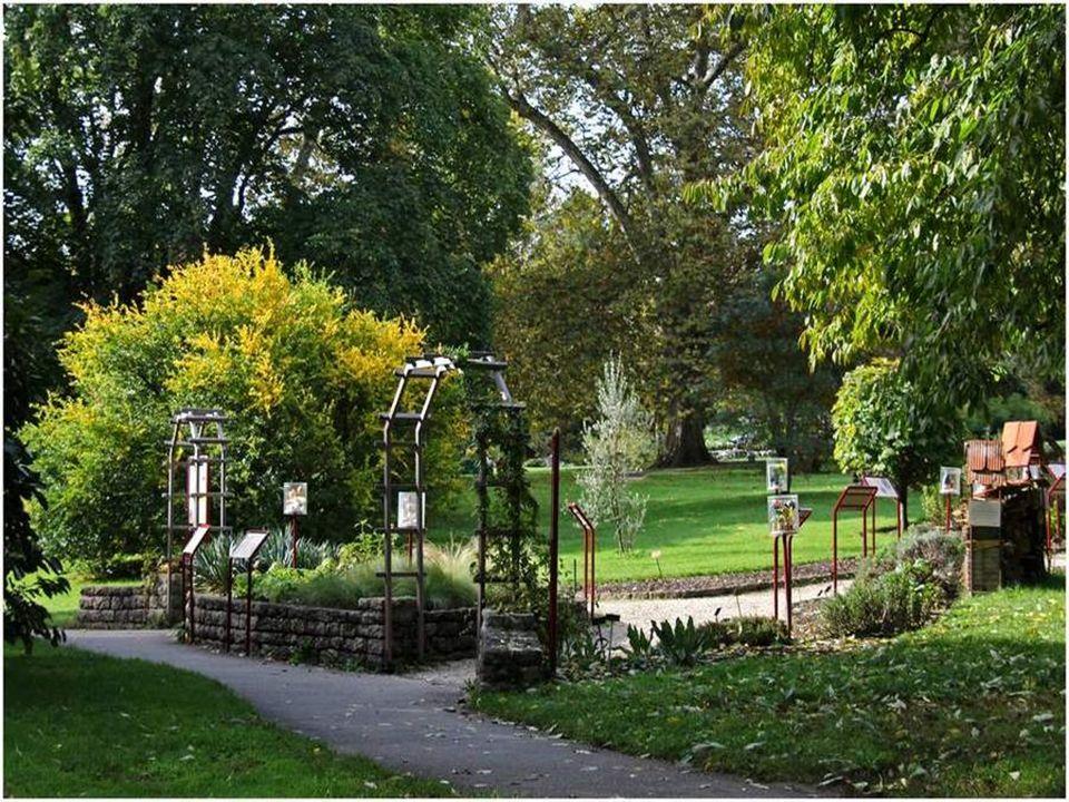 Les collections des Conservatoires et Jardin botaniques constituent un patrimoine scientifique et culturel qui contribue au rayonnement international