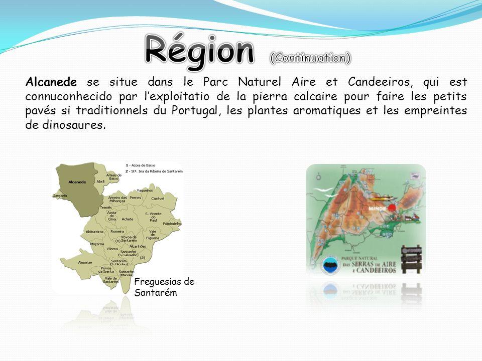 Alcanede se situe dans le Parc Naturel Aire et Candeeiros, qui est connuconhecido par lexploitatio de la pierra calcaire pour faire les petits pavés s