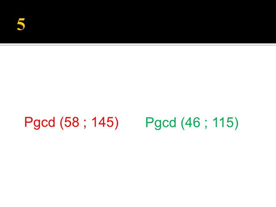 Pgcd (46 ; 115) Pgcd (58 ; 145)