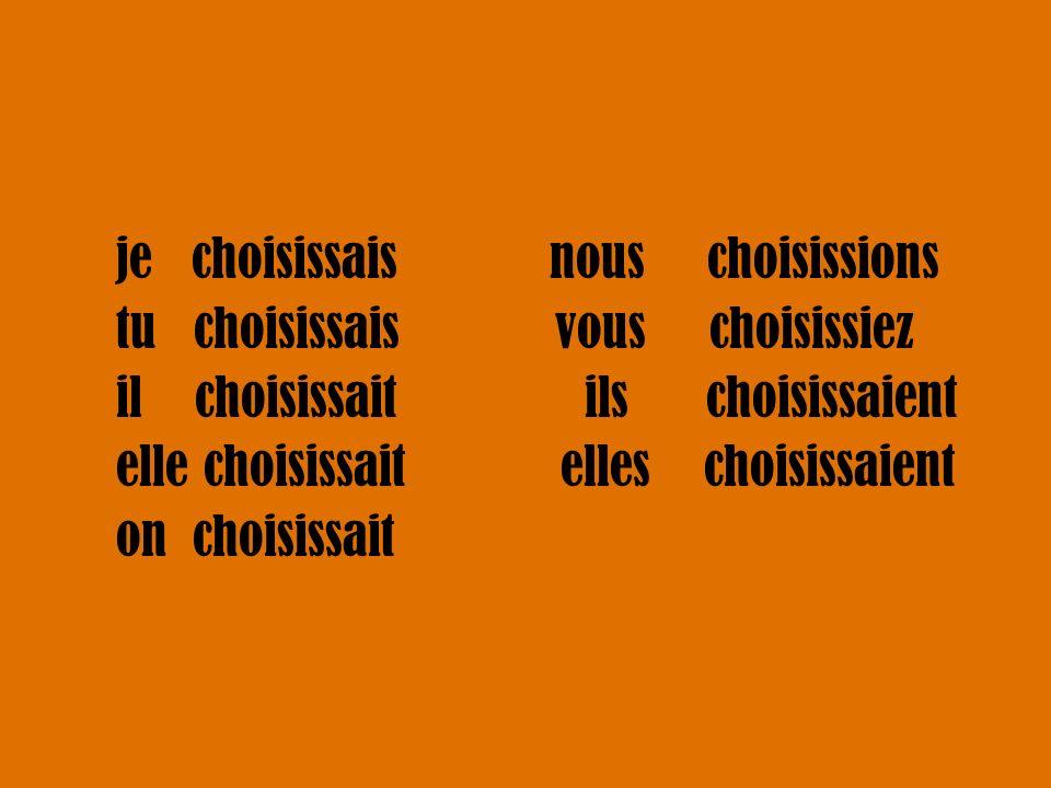je choisissais nous choisissions tu choisissais vous choisissiez il choisissait ils choisissaient elle choisissait elles choisissaient on choisissait