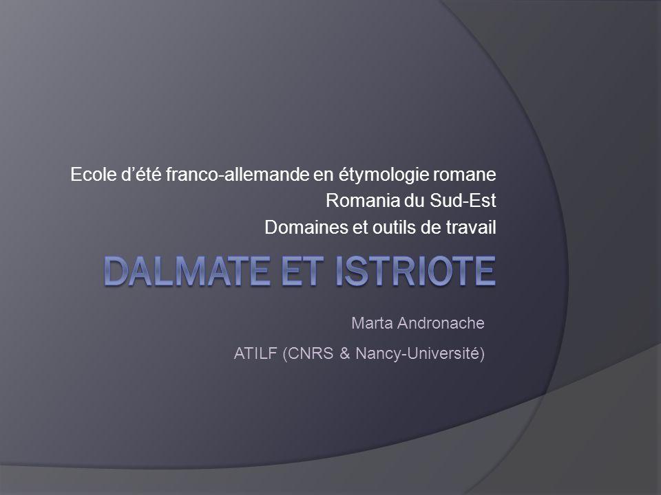 marta.andronache@atilf.fr Particularités morphologiques particularité due à la phonétique historique : -āre > -ur/uor -ēre > -ar -ĕre > -ro -īre > -er BartoliDalmatico § 474