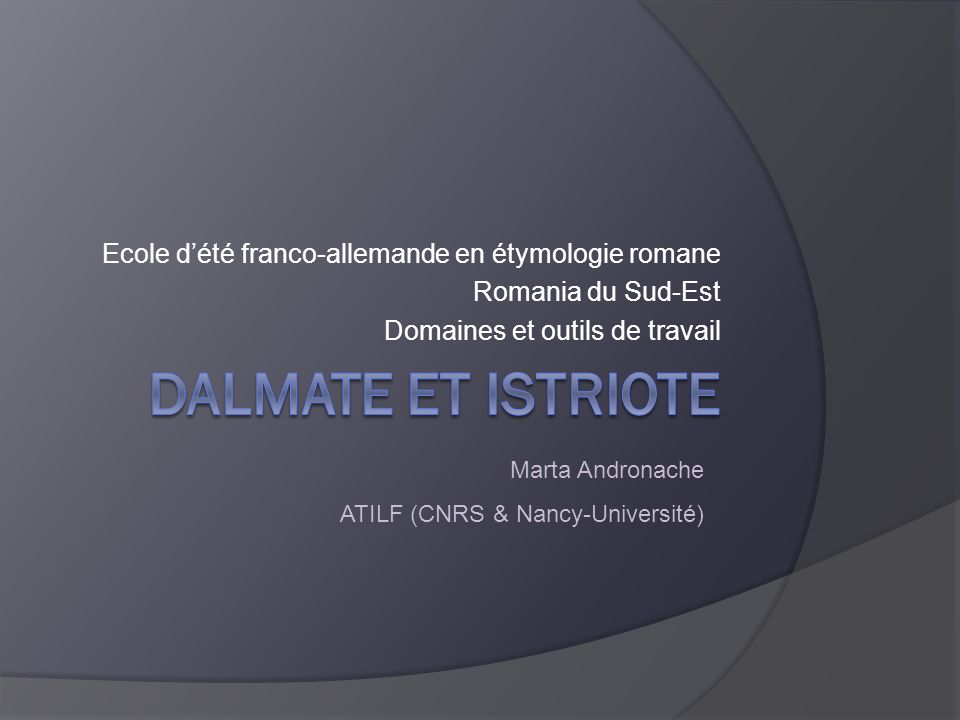 marta.andronache@atilf.fr Plan 1.Implantation géographique 2.