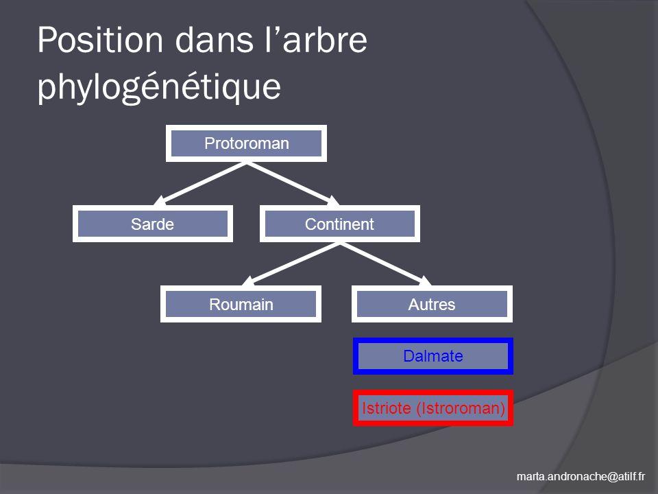 marta.andronache@atilf.fr Position dans larbre phylogénétique Protoroman SardeContinent RoumainAutres Istriote (Istroroman) Dalmate