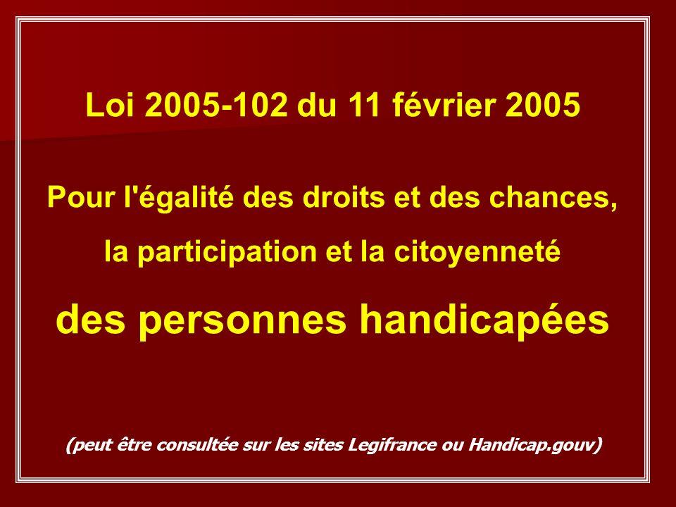 PROJET DE VIE ACCESSIBILITE PLAN DE COMPENSATION Projet Personnalisé de Scolarisation (P.P.S)