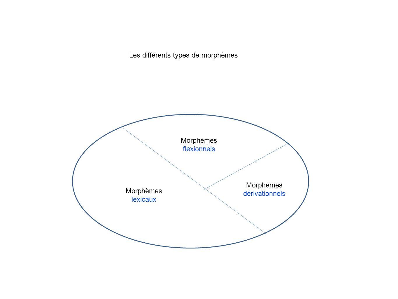 Morphèmes lexicaux Morphèmes flexionnels Morphèmes dérivationnels Les différents types de morphèmes