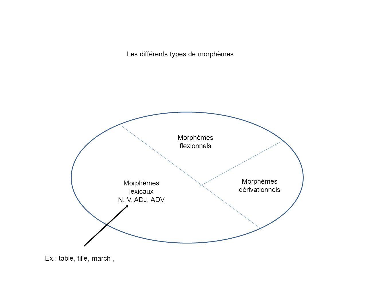 Morphèmes lexicaux Morphèmes flexionnels (nombre, genre, temps,...