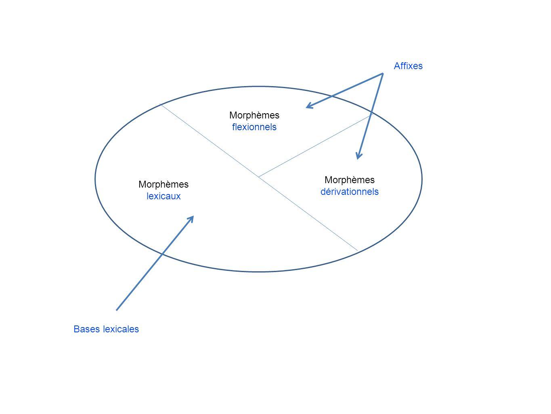 Morphèmes lexicaux Morphèmes flexionnels Morphèmes dérivationnels Bases lexicales Affixes