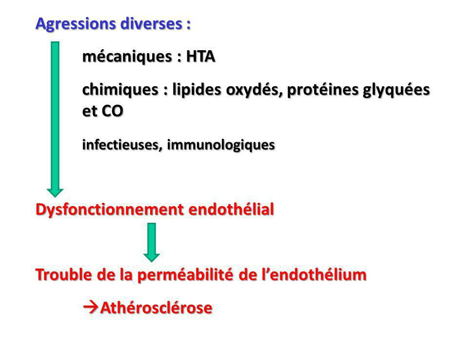 Agressions diverses : mécaniques : HTA chimiques : lipides oxydés, protéines glyquées et CO infectieuses, immunologiques Dysfonctionnement endothélial Trouble de la perméabilité de lendothélium Athérosclérose Athérosclérose