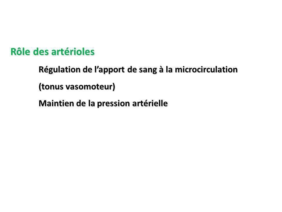 Rôle des artérioles Régulation de lapport de sang à la microcirculation (tonus vasomoteur) Maintien de la pression artérielle
