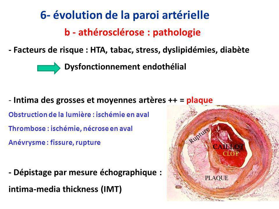 6- évolution de la paroi artérielle b - athérosclérose : pathologie - Facteurs de risque : HTA, tabac, stress, dyslipidémies, diabète Dysfonctionnement endothélial - Intima des grosses et moyennes artères ++ = plaque Obstruction de la lumière : ischémie en aval Thrombose : ischémie, nécrose en aval Anévrysme : fissure, rupture - Dépistage par mesure échographique : intima-media thickness (IMT)