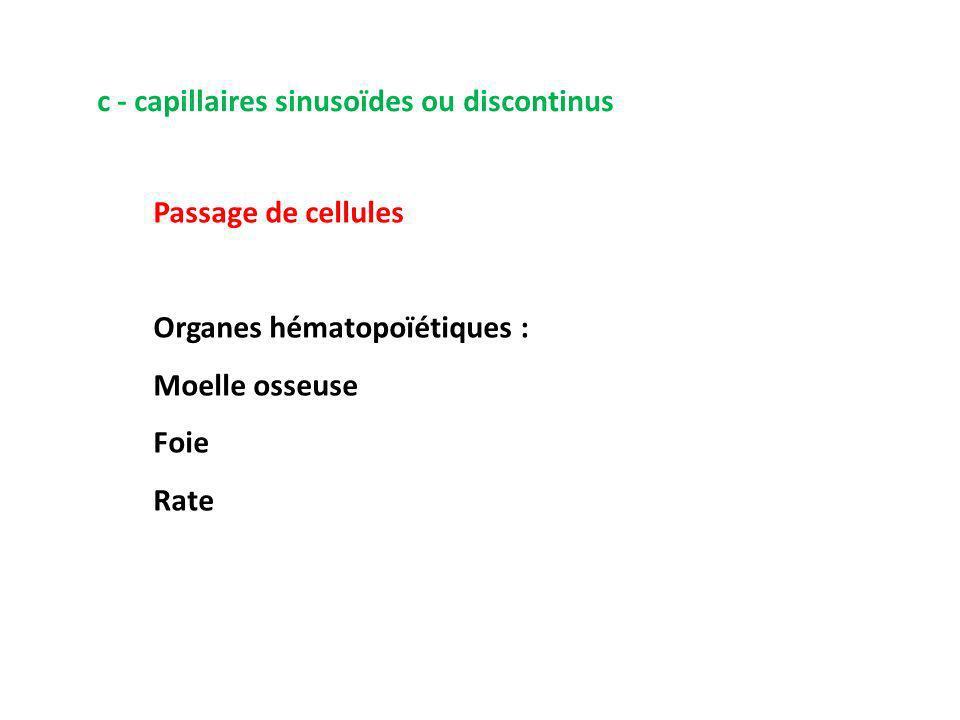 c - capillaires sinusoïdes ou discontinus Passage de cellules Organes hématopoïétiques : Moelle osseuse Foie Rate