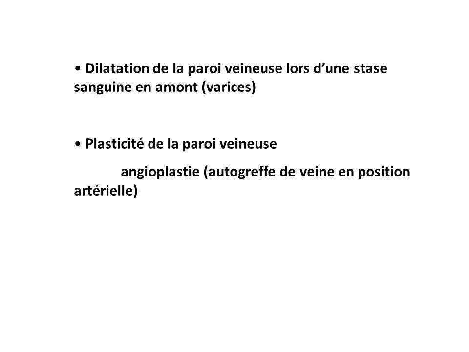 Dilatation de la paroi veineuse lors dune stase sanguine en amont (varices) Plasticité de la paroi veineuse angioplastie (autogreffe de veine en position artérielle)
