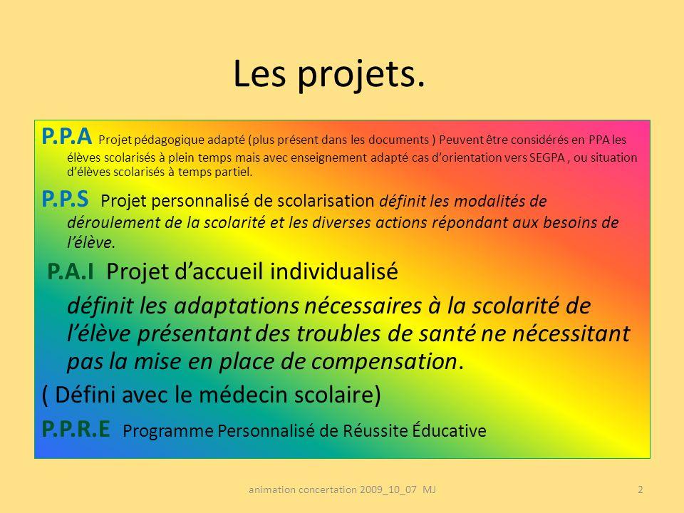 Les projets. P.P.A Projet pédagogique adapté (plus présent dans les documents ) Peuvent être considérés en PPA les élèves scolarisés à plein temps mai