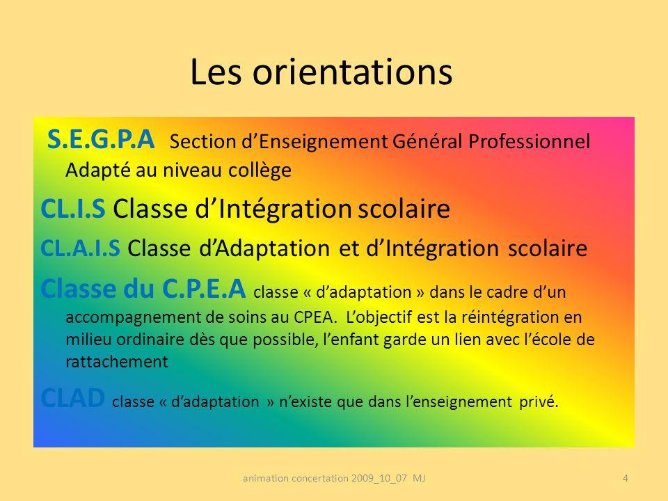 Les orientations S.E.G.P.A Section dEnseignement Général Professionnel Adapté au niveau collège CL.I.S Classe dIntégration scolaire CL.A.I.S Classe dA
