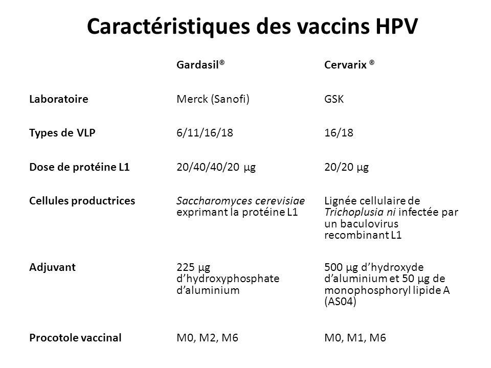Gardasil®Cervarix ® LaboratoireMerck (Sanofi)GSK Types de VLP6/11/16/1816/18 Dose de protéine L120/40/40/20 μg20/20 μg Cellules productrices Saccharomyces cerevisiae exprimant la protéine L1 Lignée cellulaire de Trichoplusia ni infectée par un baculovirus recombinant L1 Adjuvant 225 μg dhydroxyphosphate daluminium 500 μg dhydroxyde daluminium et 50 μg de monophosphoryl lipide A (AS04) Procotole vaccinalM0, M2, M6M0, M1, M6 Caractéristiques des vaccins HPV