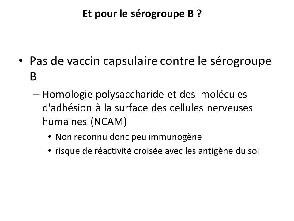Et pour le sérogroupe B ? Pas de vaccin capsulaire contre le sérogroupe B – Homologie polysaccharide et des molécules d'adhésion à la surface des cell