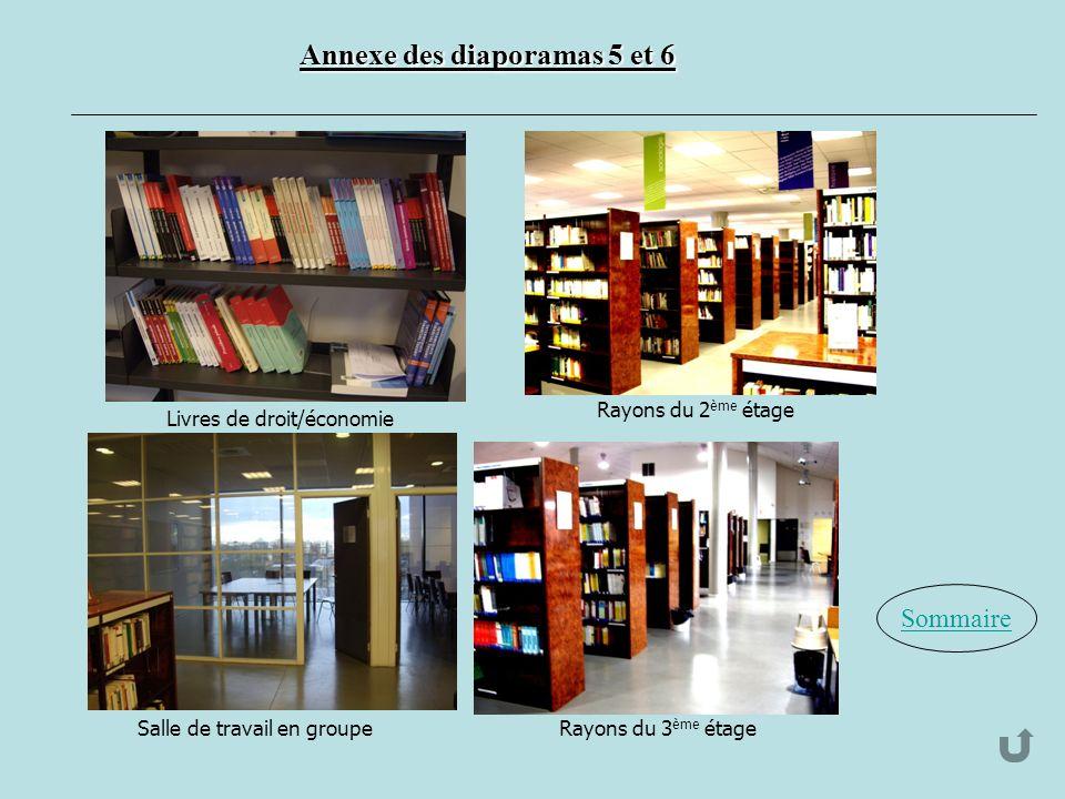 Sommaire Annexe des diaporamas 5 et 6 Livres de droit/économie Rayons du 2 ème étage Salle de travail en groupeRayons du 3 ème étage
