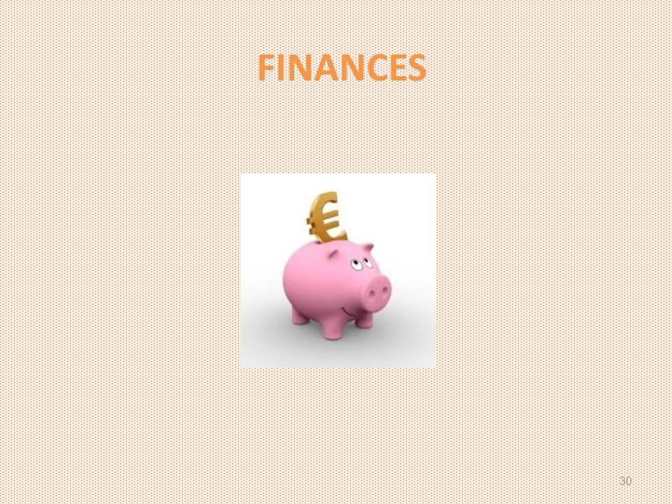 FINANCES 30