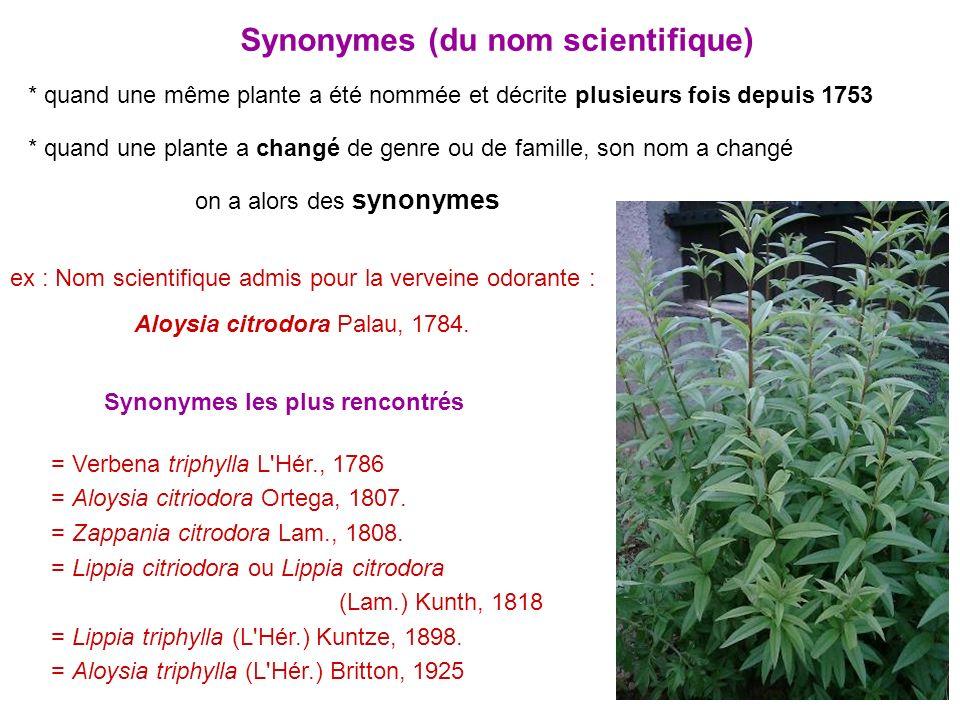 11 Synonymes (du nom scientifique) * quand une même plante a été nommée et décrite plusieurs fois depuis 1753 * quand une plante a changé de genre ou