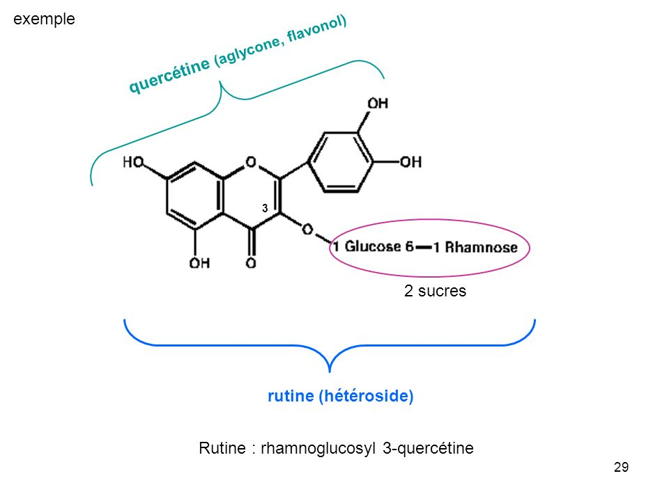 29 2 sucres quercétine (aglycone, flavonol) rutine (hétéroside) 3 Rutine : rhamnoglucosyl 3-quercétine exemple