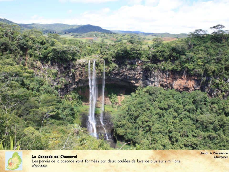 Jeudi 4 Décembre Chamarel La Cascade de Chamarel Les parois de la cascade sont formées par deux coulées de lave de plusieurs millions dannées.