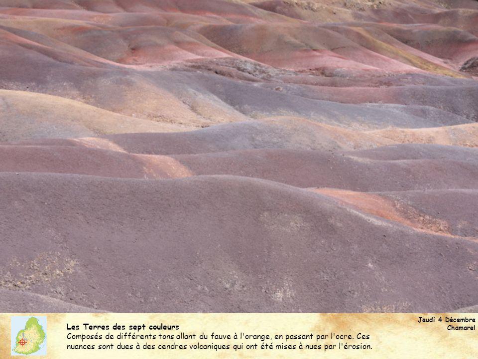 Jeudi 4 Décembre Chamarel Les Terres des sept couleurs Composés de différents tons allant du fauve à l'orange, en passant par l'ocre. Ces nuances sont