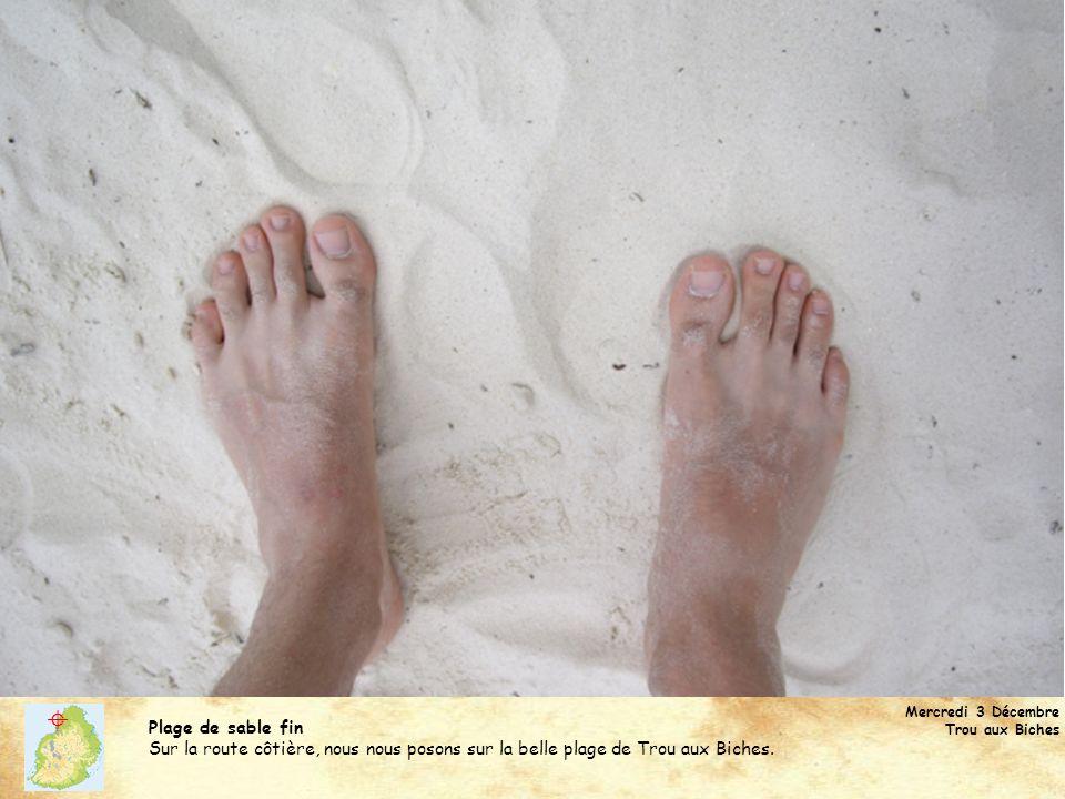 Mercredi 3 Décembre Trou aux Biches Plage de sable fin Sur la route côtière, nous nous posons sur la belle plage de Trou aux Biches.