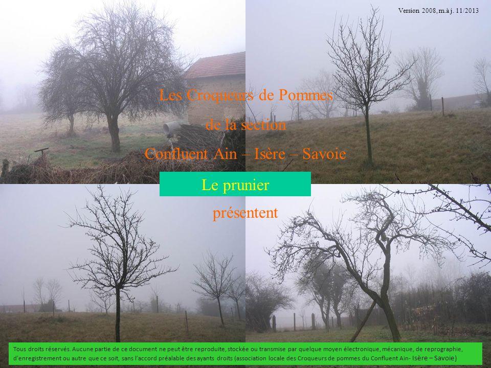 Les Croqueurs de Pommes de la section Confluent Ain – Isère – Savoie présentent suite Le prunier Tous droits réservés. Aucune partie de ce document ne