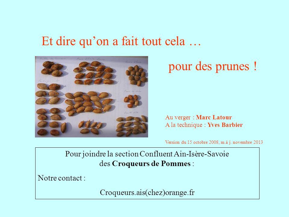 Et dire quon a fait tout cela … pour des prunes ! Pour joindre la section Confluent Ain-Isère-Savoie des Croqueurs de Pommes : Notre contact : Croqueu