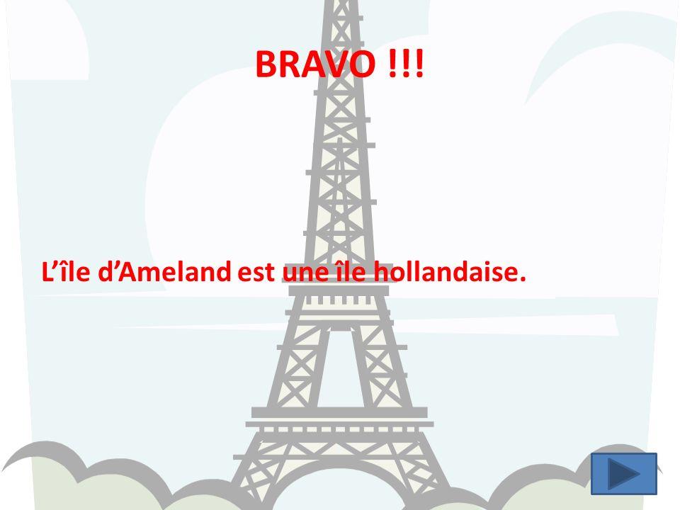 BRAVO !!! Lîle dAmeland est une île hollandaise.