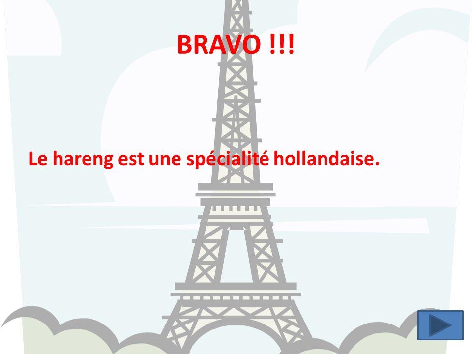 BRAVO !!! Le hareng est une spécialité hollandaise.