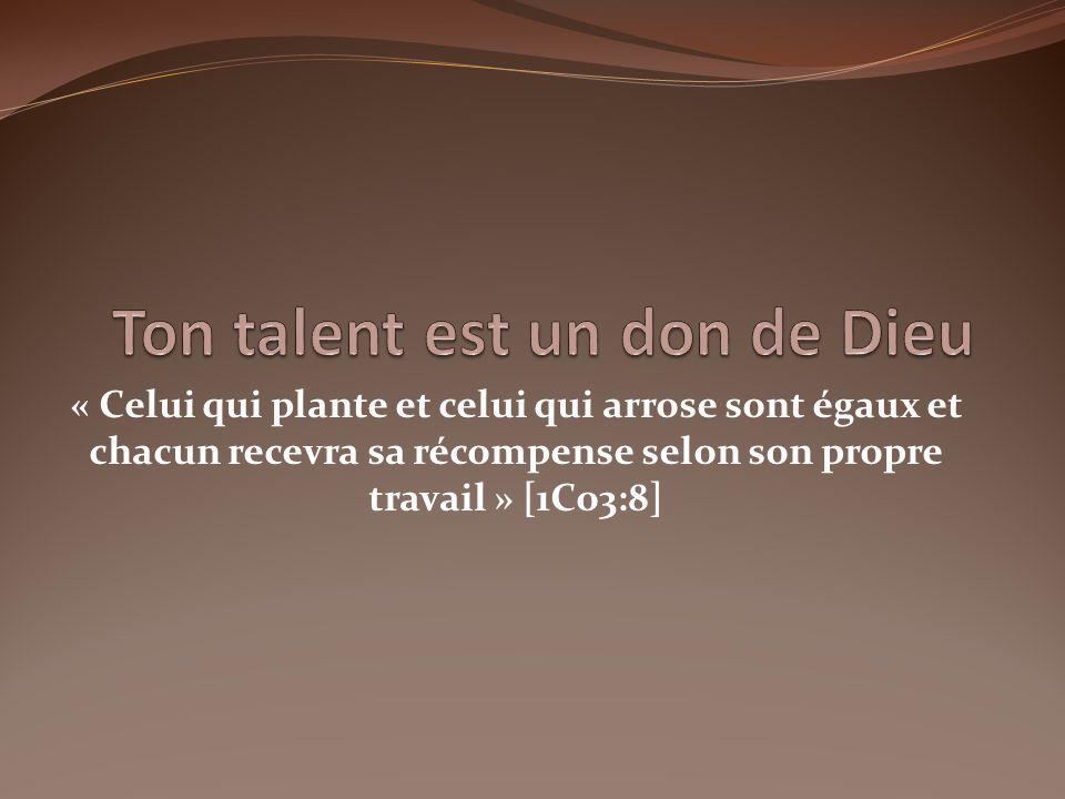« Celui qui plante et celui qui arrose sont égaux et chacun recevra sa récompense selon son propre travail » [1Co3:8]
