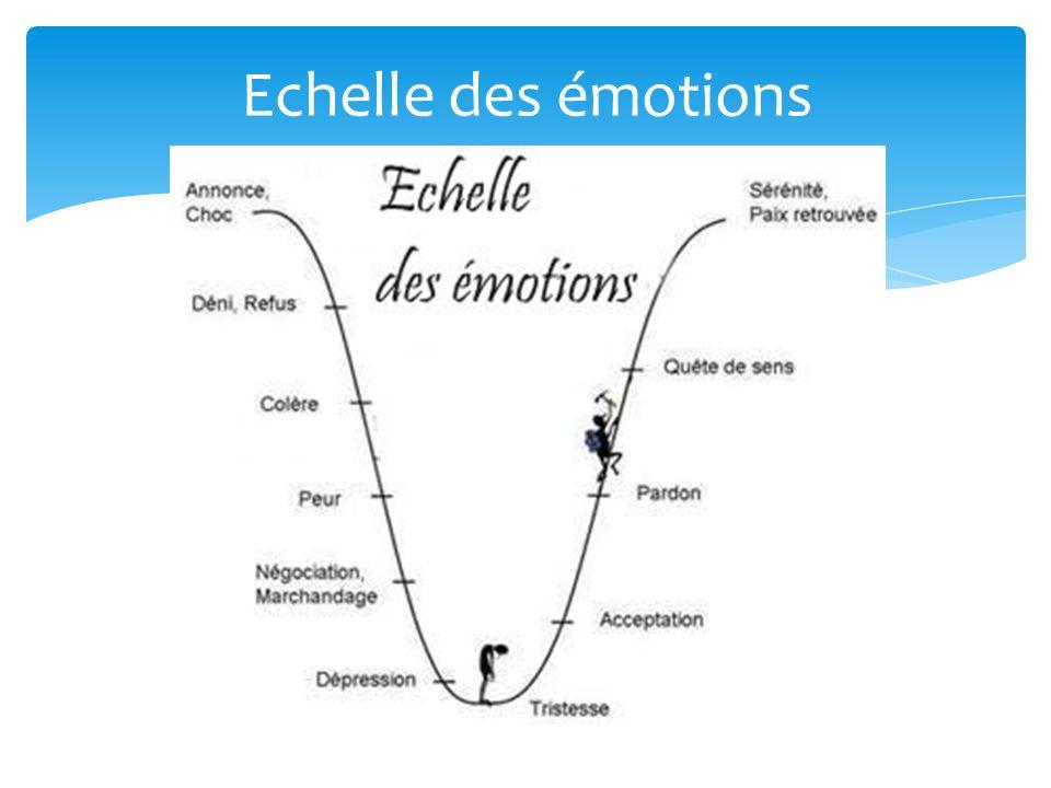 Echelle des émotions