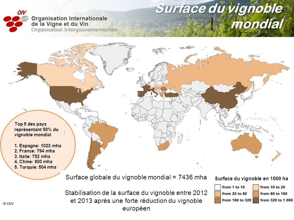 Surface du vignoble mondial Surface globale du vignoble mondial = 7436 mha Stabilisation de la surface du vignoble entre 2012 et 2013 après une forte