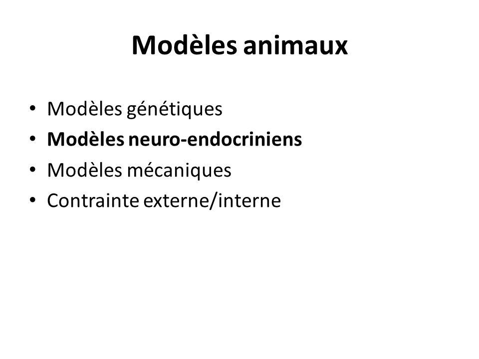 Modèles animaux Modèles génétiques Modèles neuro-endocriniens Modèles mécaniques Contrainte externe/interne