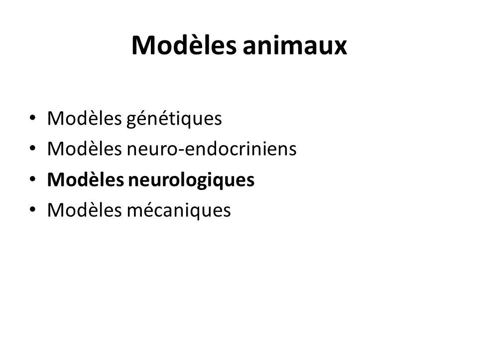 Modèles animaux Modèles génétiques Modèles neuro-endocriniens Modèles neurologiques Modèles mécaniques