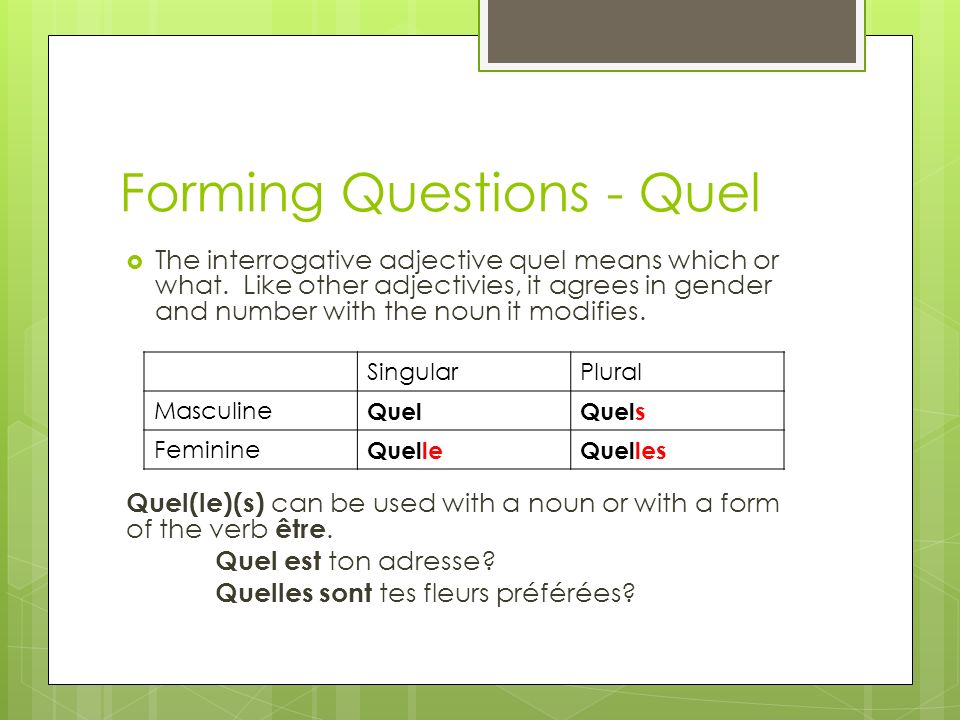 Forming Questions - Quel The interrogative adjective quel means which or what.